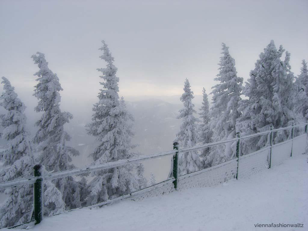 Schneelandschaft Rax
